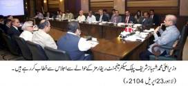 Shahbaz Sharif presides over public sector management reforms meeting