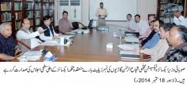 Policy of computerization and e-technology is adopted in government affairs : Mujtaba Shuja