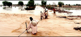 Punjab cabinet and all PML-N MPAs will donate their one-month's salary to the flood affectees