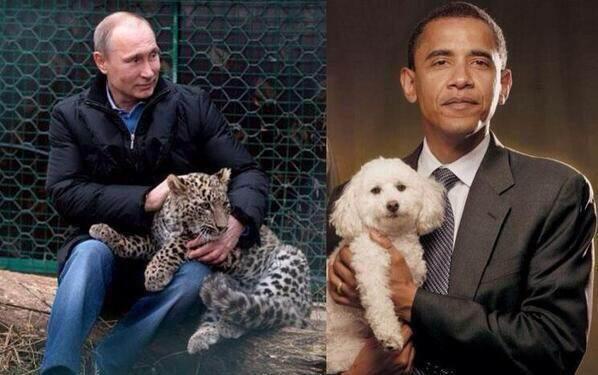 Obama's poodle vs Putin's leopard.jpg